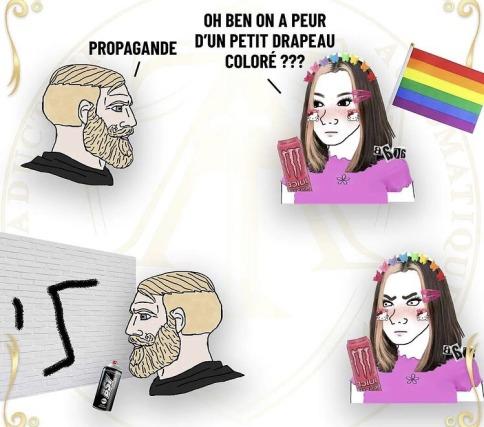 lgpd - meme
