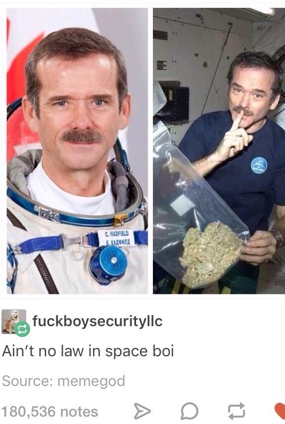 space oddity - meme