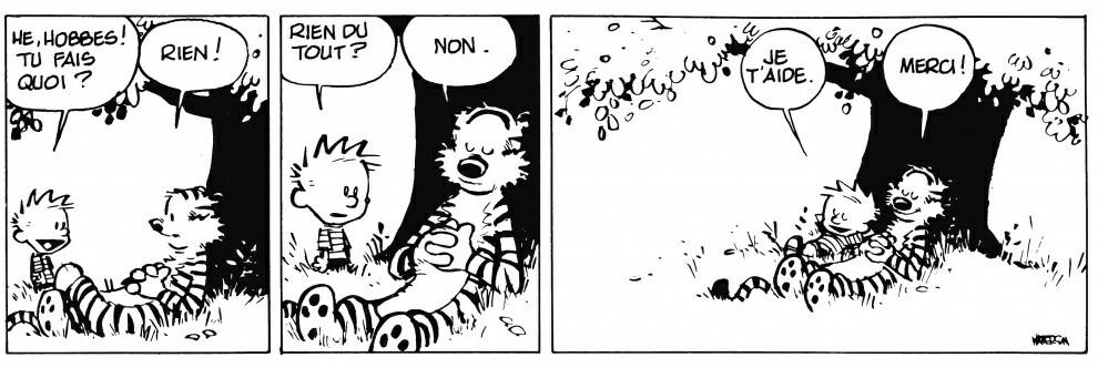 Calvin et Hobbes - meme