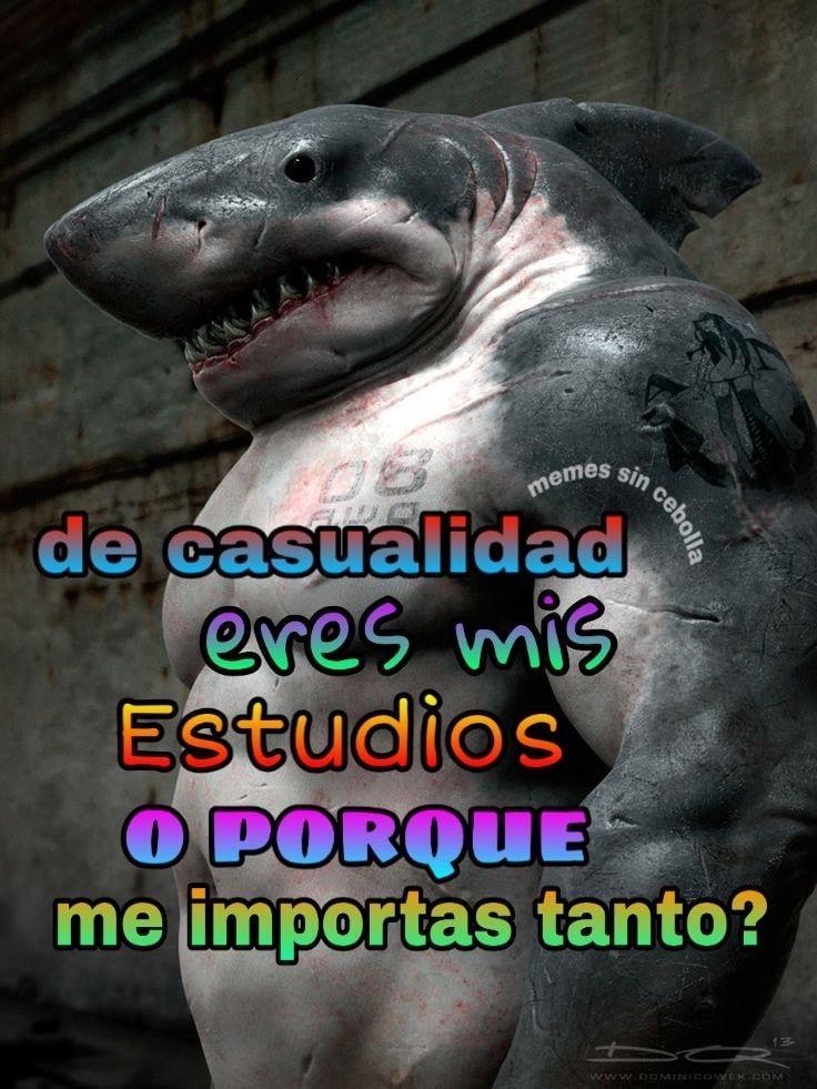 MentalidadDeTiburon# - meme