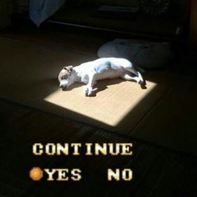 Continue? - meme
