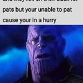 No pats for the pussy