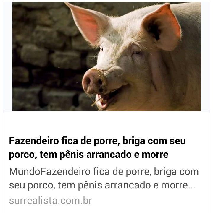 Se beber não caia no x1 com porcos. - meme