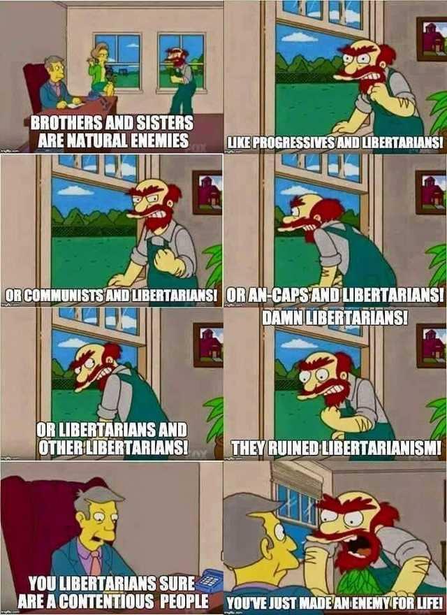 Libertarians - meme