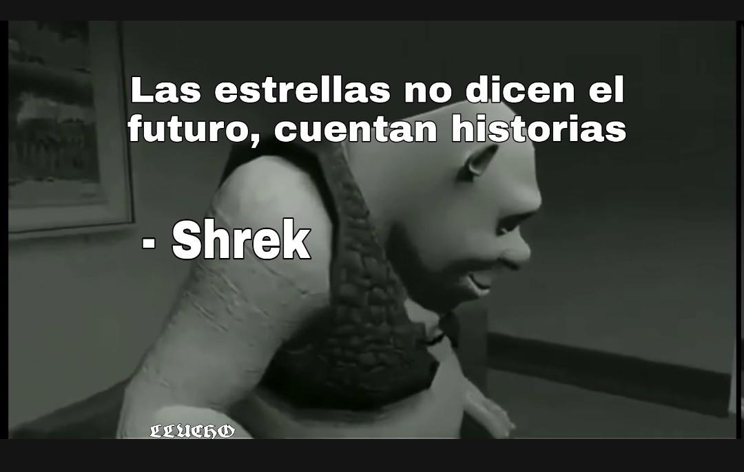 Que profunda reflexión de Shrek - meme