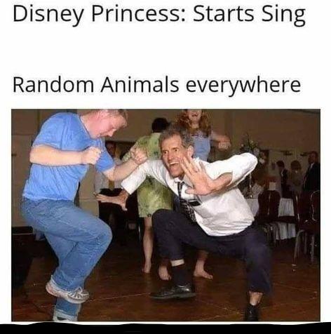 Princesses songs has animal mind control.. - meme
