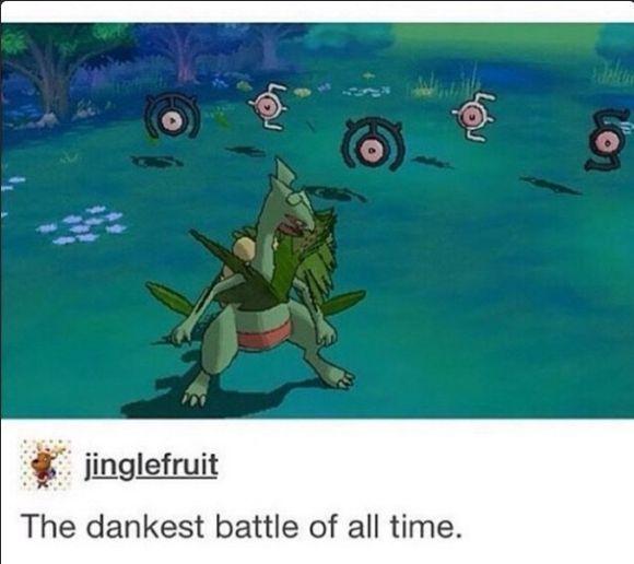 Memes are great yo