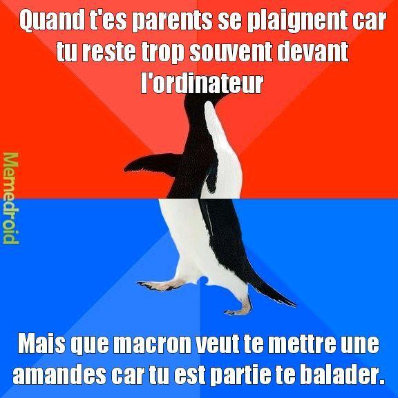 Sortir dehors = Amandes, mais où vas la France - meme