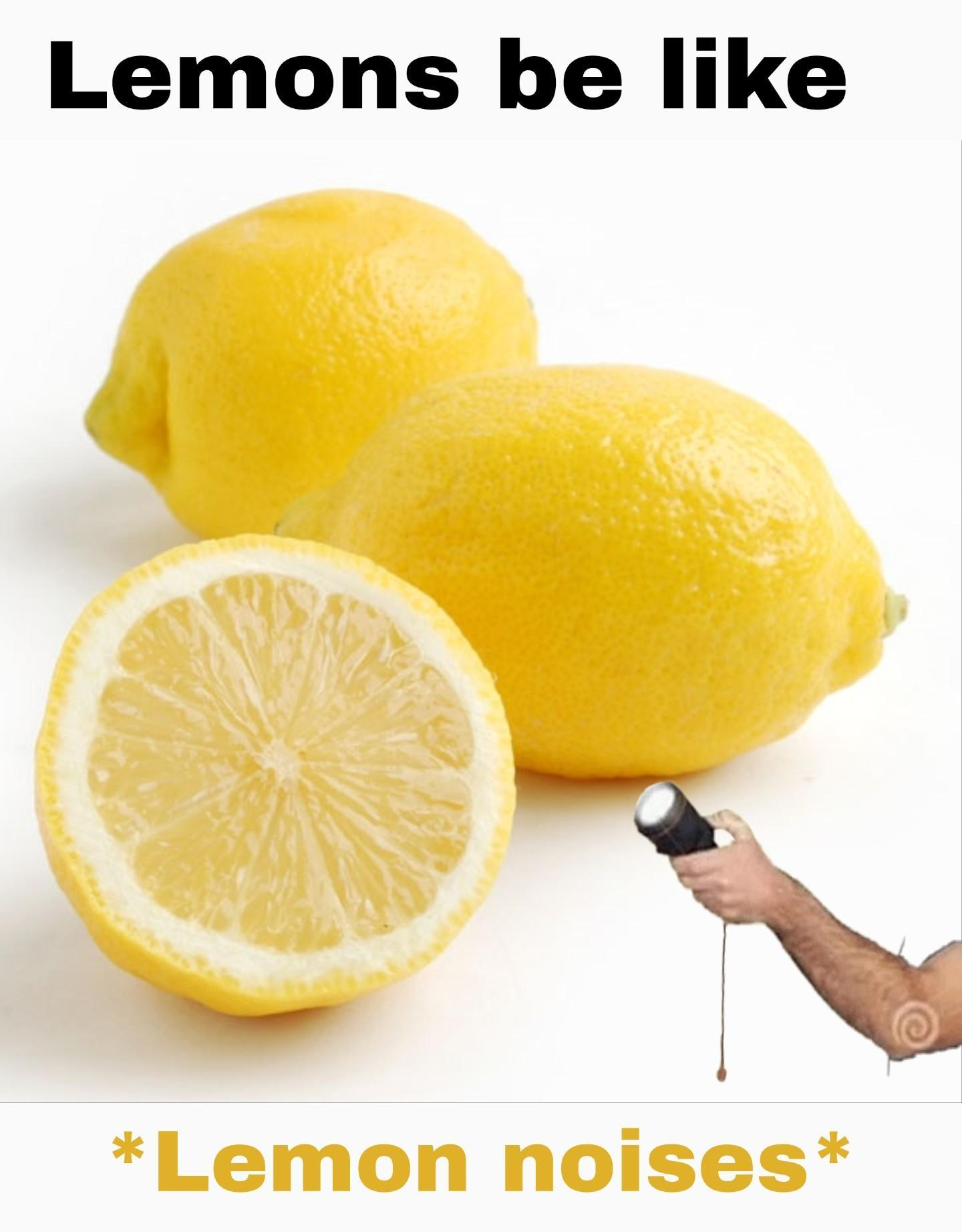 Lemon noises - meme