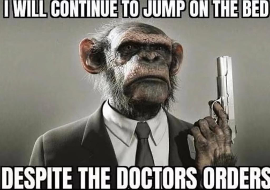 monkey - meme