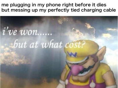 wario is lord, wario is king - meme