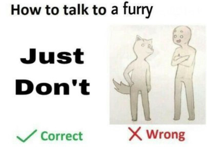 Nah...Some furries are actually nice - meme