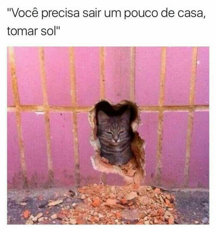 Ata (meme da Mônica)