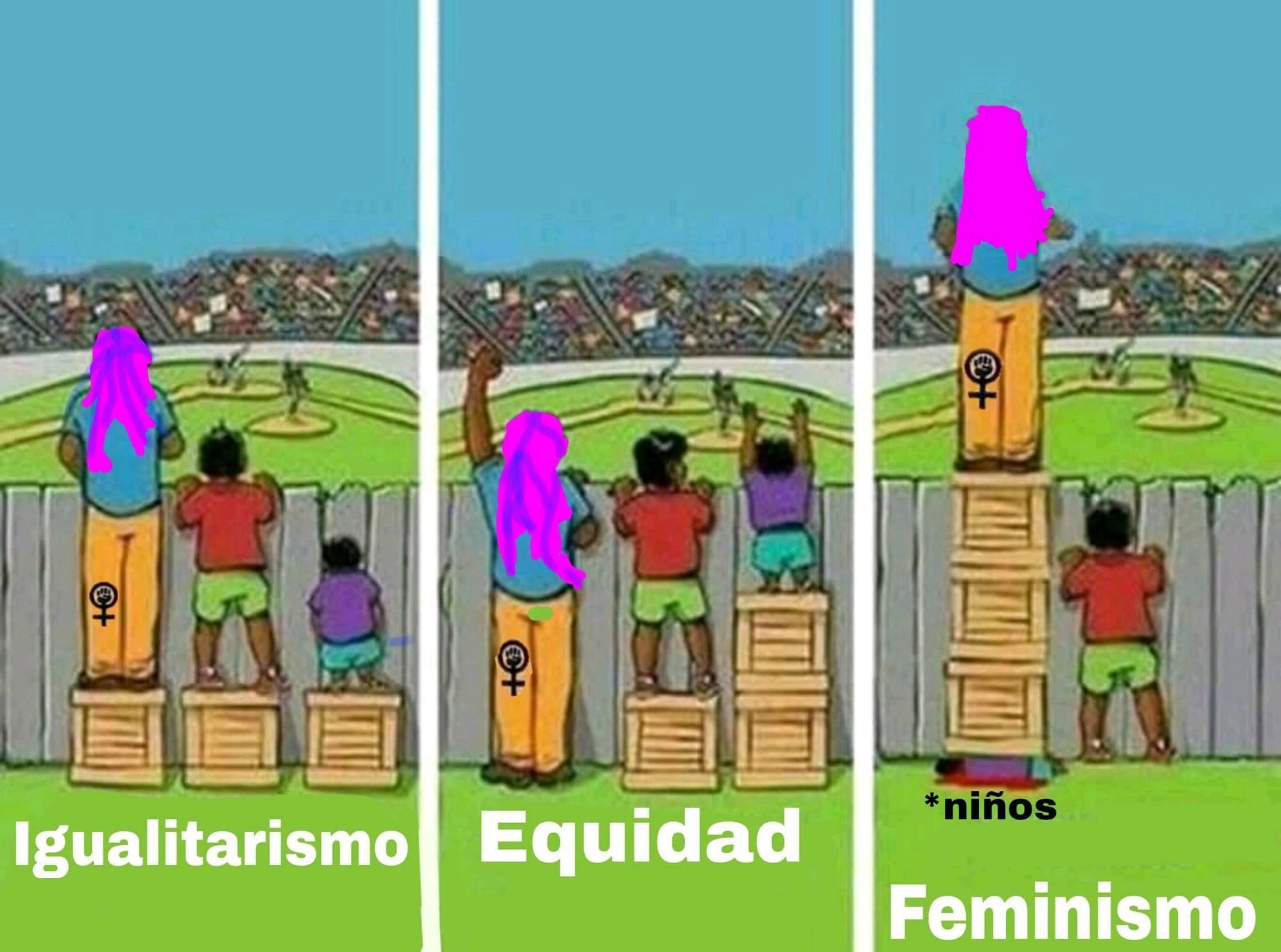 Malditas feministas... arruinaron el feminismo... - meme