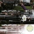 Armas matam seu fascisto!!!