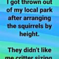 Squirrelly bois