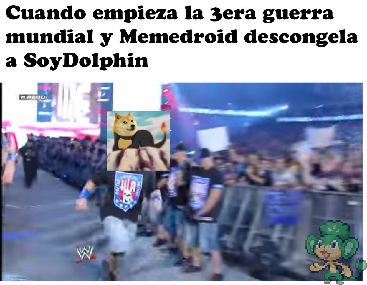 SoyDolphin - meme