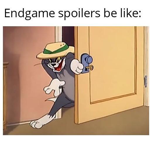 Spoilers everywhere - meme