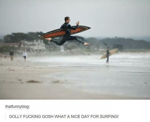 What a nice day for surfing - meme
