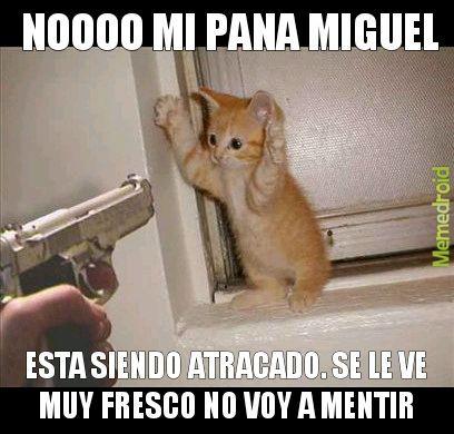 Miguel NOOOoooOOaoOoOooo NOOOoooOOaoOoOooo NOOOoooOOaoOoOooo NOOOoooOOaoOoOooo - meme