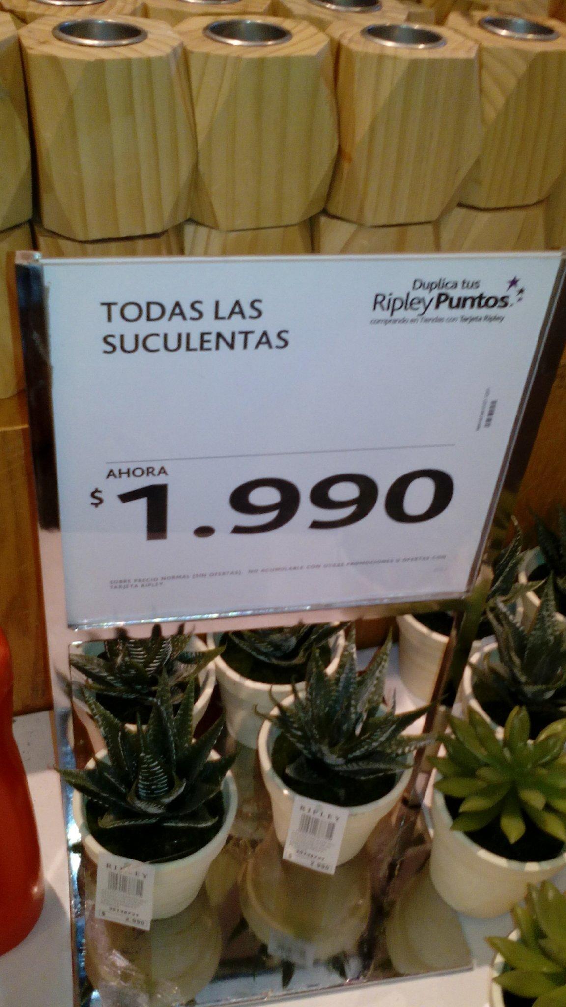 Las plantas tambien son suculentas - meme