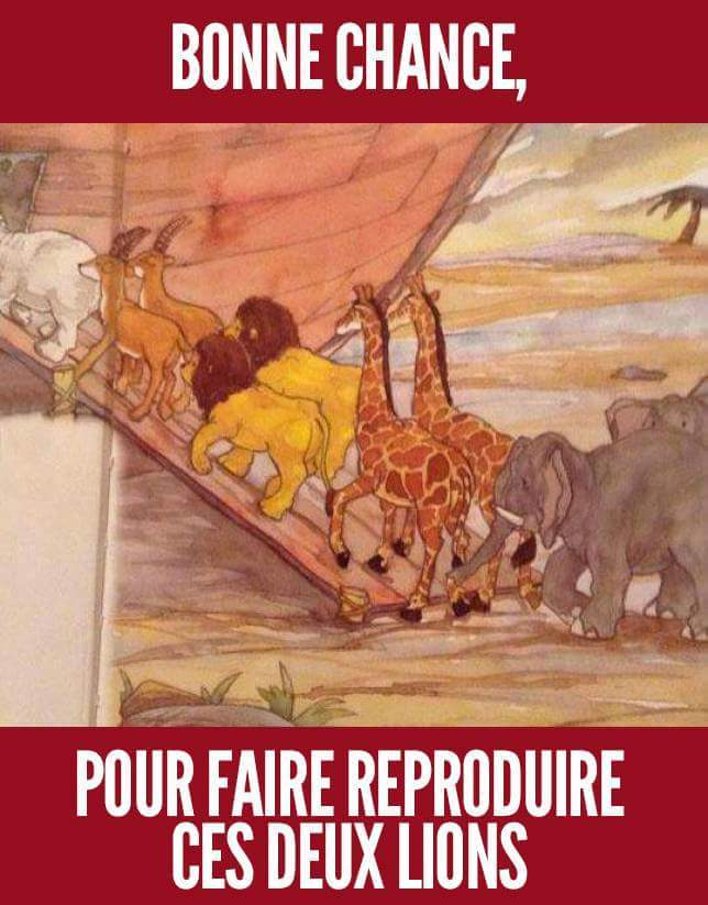 Fail du dessinateur - meme