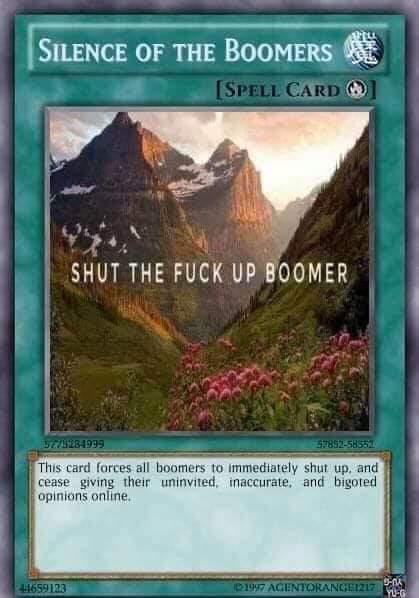 Fuck you boomer - meme