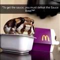 Sauce Boss Froggo