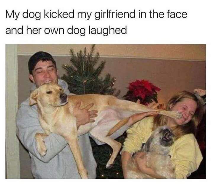 Kung Fu Doggo - meme