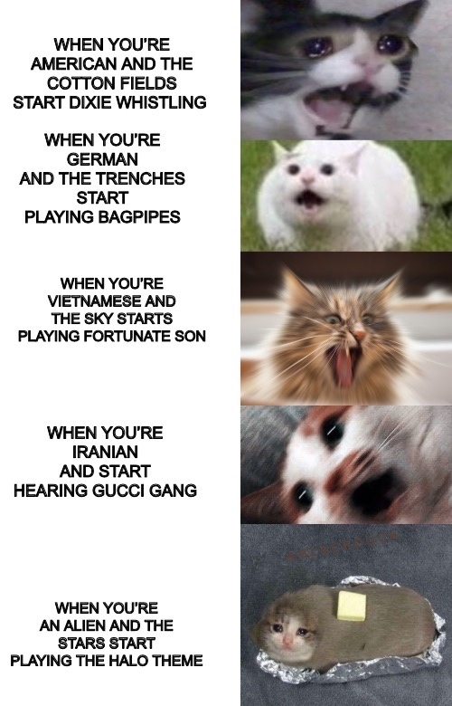 OC do it probably won't pass mod - meme