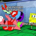 Me trying to find the bug