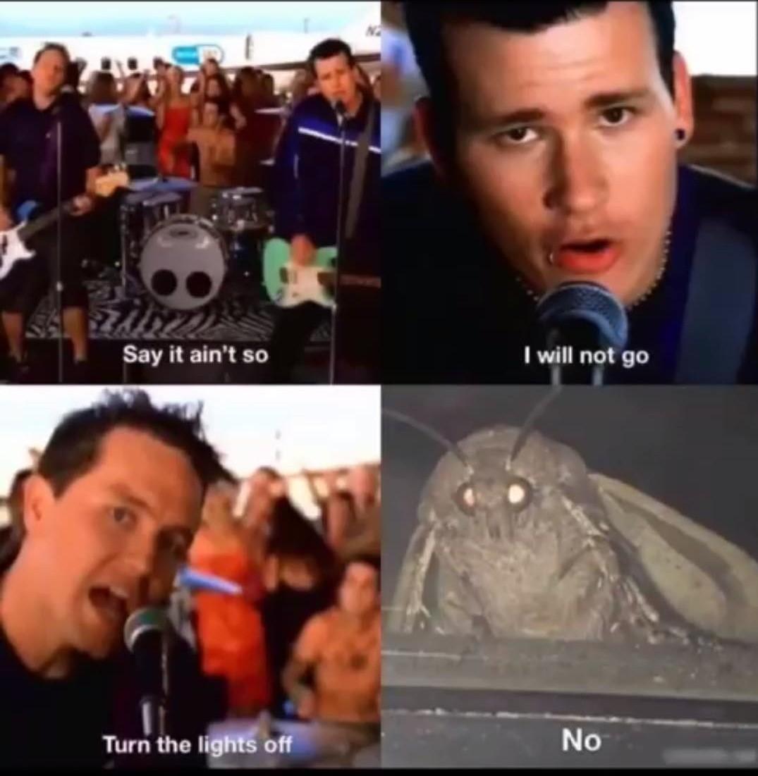 ayy mothmao - meme