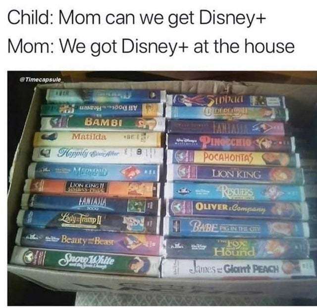 We got Disney+ at the house - meme