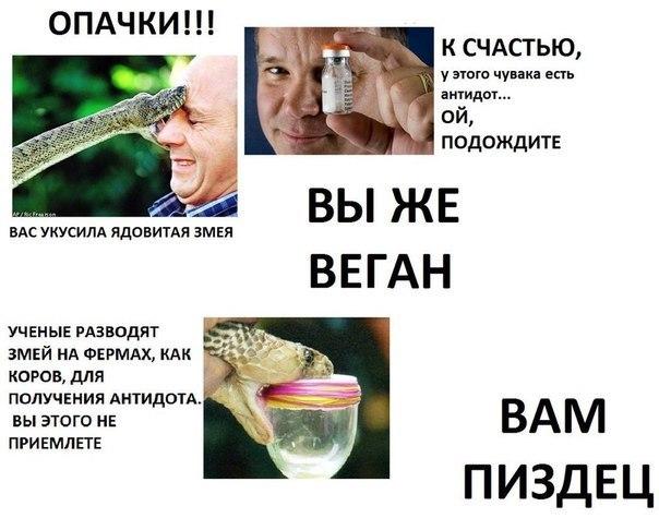 Виганы саснуле - meme