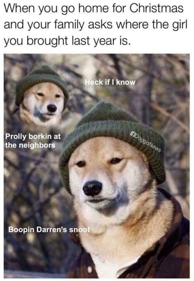 Fuckdoggo - meme