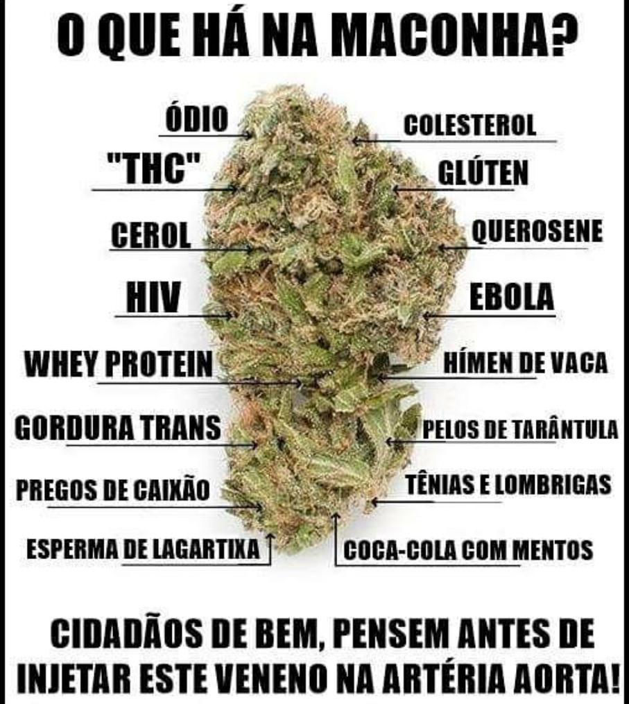 MALCOMHA. NAUM XEIREM - meme