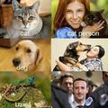 I'm a lizard person
