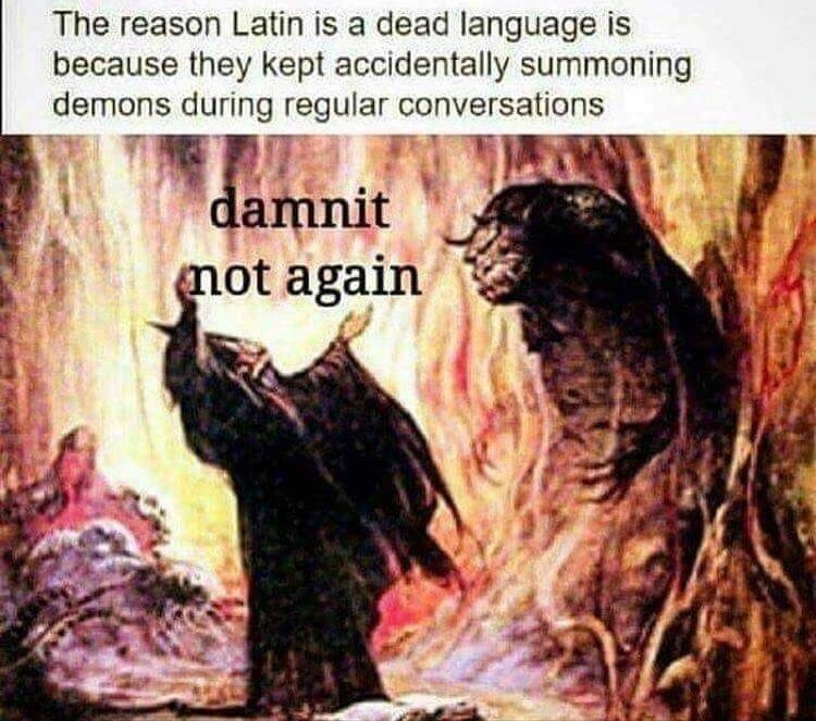Love that Language. - meme