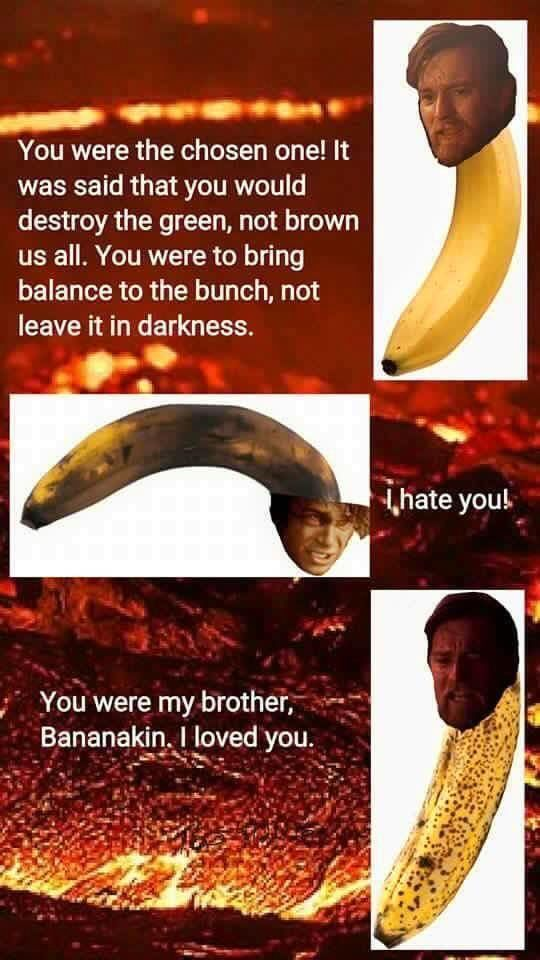 You were my brother - meme
