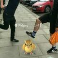 No al maltrato pokemon >:v