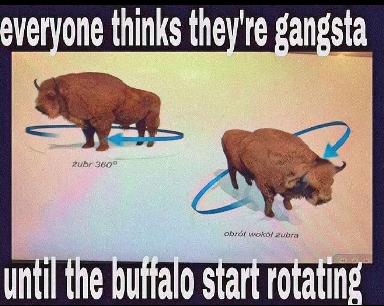rotation - meme