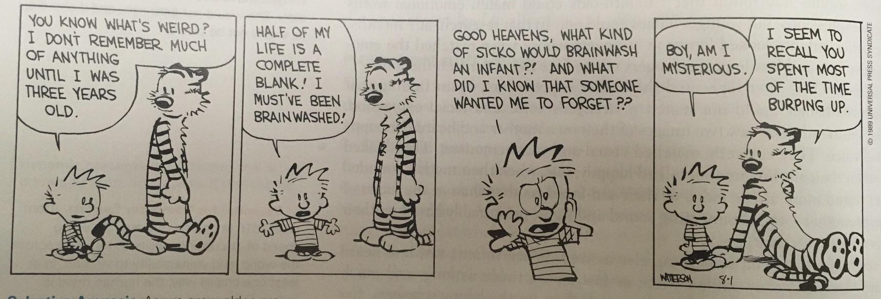 Calvin and Hobbes. - meme