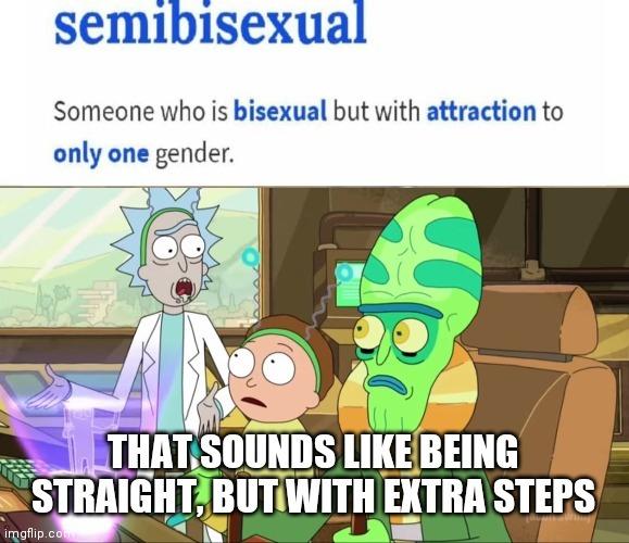 I'm not straight, I'm semibisexual - meme