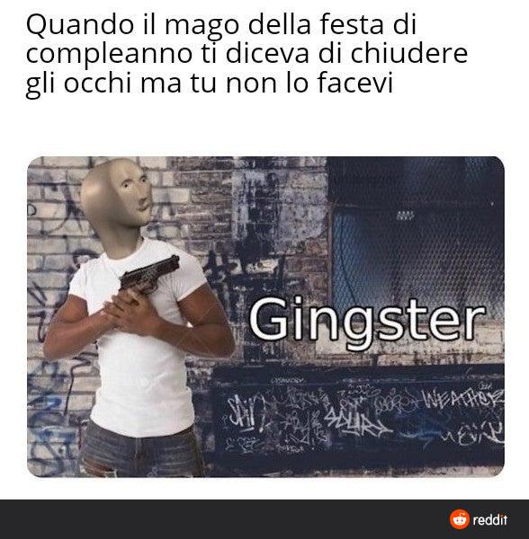 Gingter - meme
