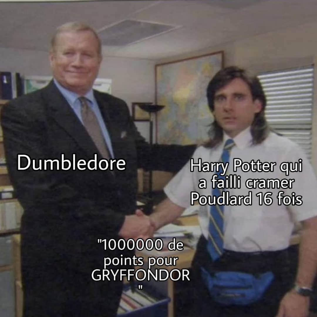 50 points pour Gryffondor ! - meme