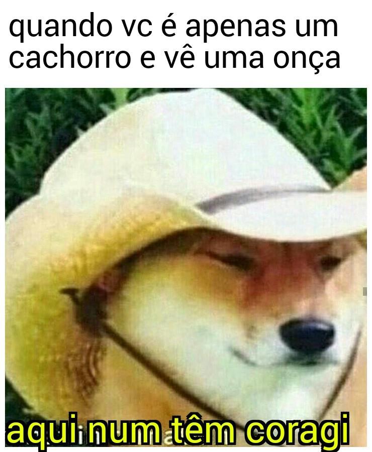 Apenas um doggo - meme
