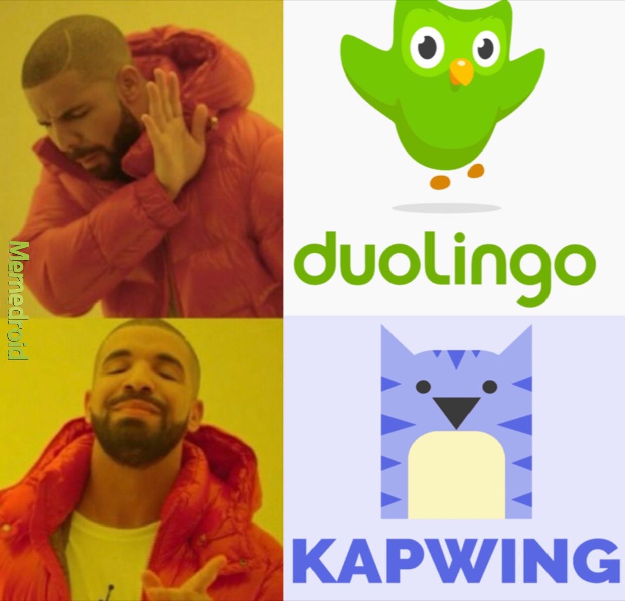 long live the Kapwing Owl - meme