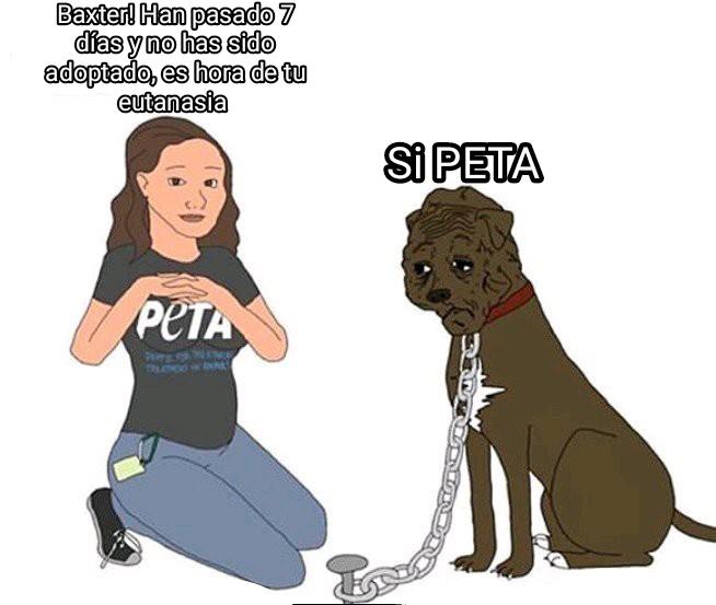 "PETA: ""Defensora de Animales"" Eutanasia: Sacrificar - meme"