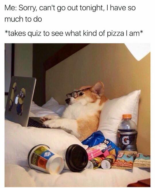 Cheesy Margherita or Pep? - meme