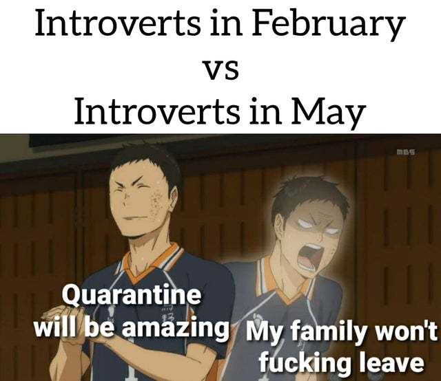 Introverts in February vs Introverts in May - meme